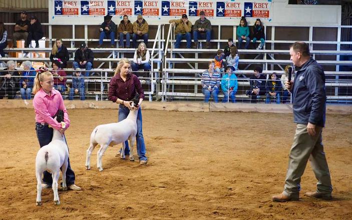 2017 Burnet County Livestock Show