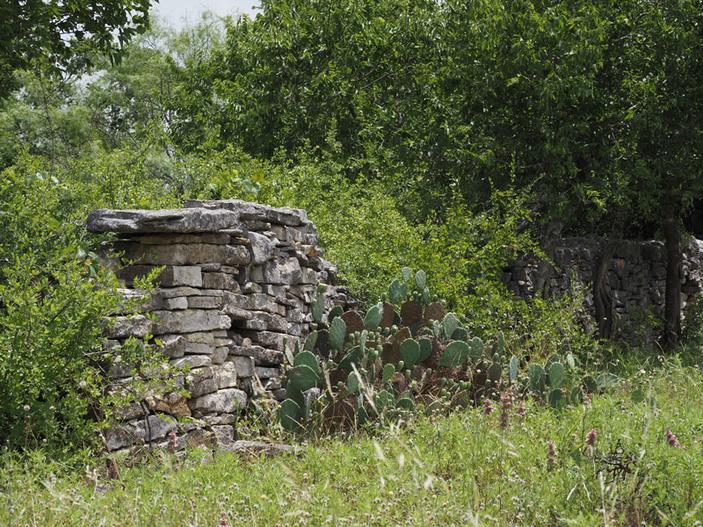 Black's Fort near Bertram