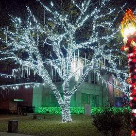 Burnet County Courthouse Christmas