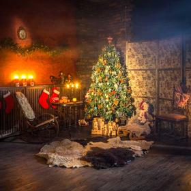 Origins of the Christmas tree?