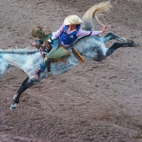 Burnet County Rodeo