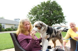 Therapy Dogs International Volunteers: Sit, Share