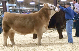 Llano County Jr. Livestock Show is Jan. 10-12