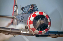 2019 Burnet Bluebonnet Airshow highlights 'Wings and Wheels'