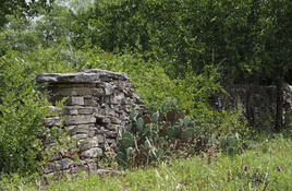 What's in a Name? Black's Fort near Bertram