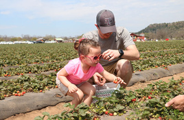 Sweet Berry Farm opens early for spring season