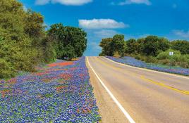 TxDOT crews mow-tivate wildflowers along highways
