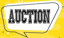 llano crawfish open auction