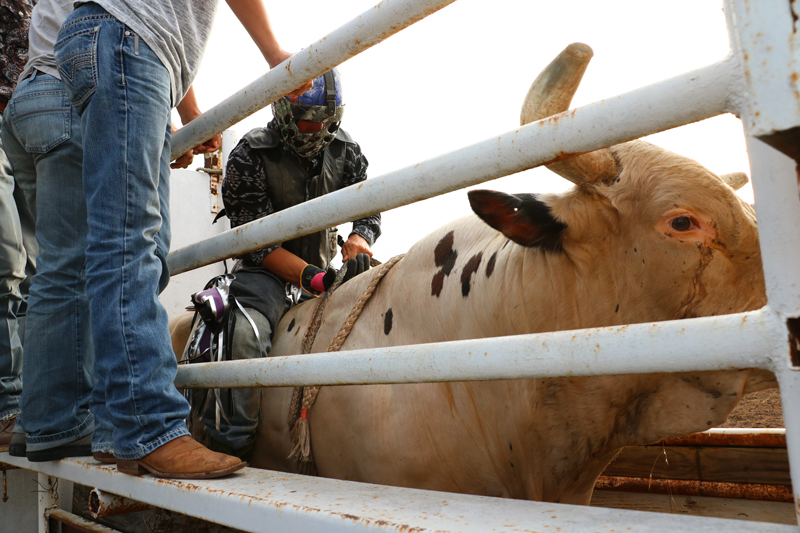 Highland Lakes Rodeos Hang On To Texas Tradition