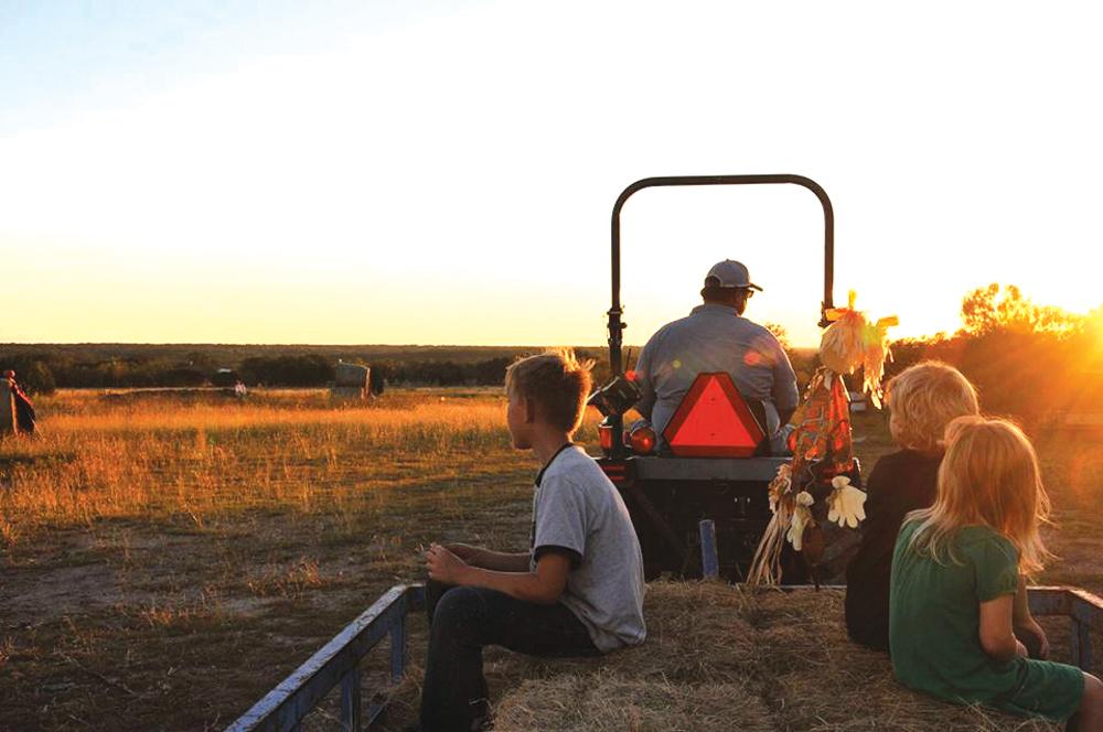 Texas Worm Pumpkin Patch Opens Sept 28